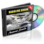 Babbling_Brook