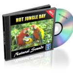 Hot_Jungle_Day