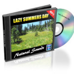 Lazy_Summer_Day