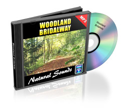 Woodland_Bridalway
